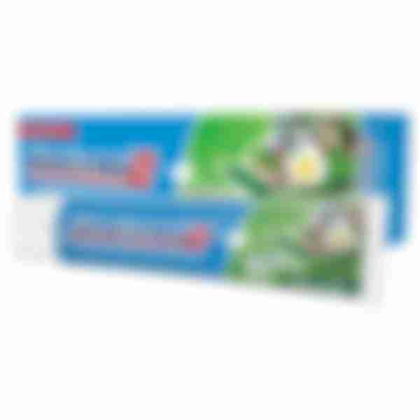 Зубная паста P&G Blend-a-med Травяной сбор, 100мл