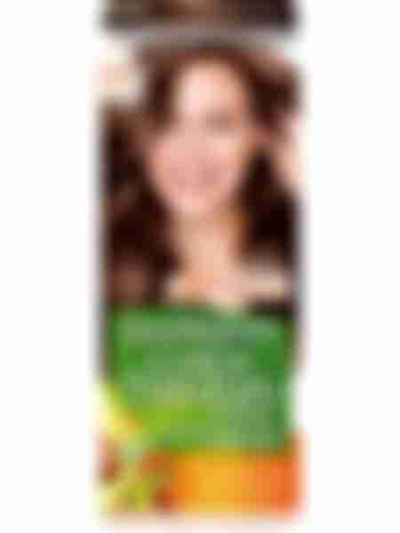 Garnier Color Naturals Краска для волос 5.15 Пряный Эспрессо