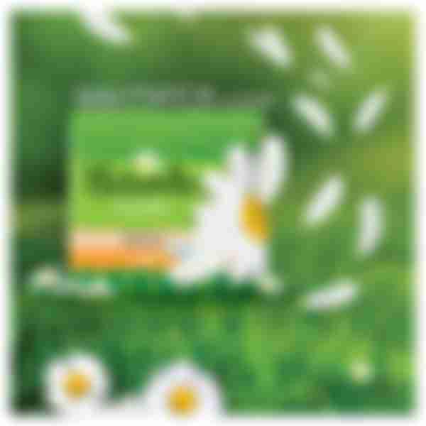 Гигиенические прокладки P&G Naturella классик normal, 12шт