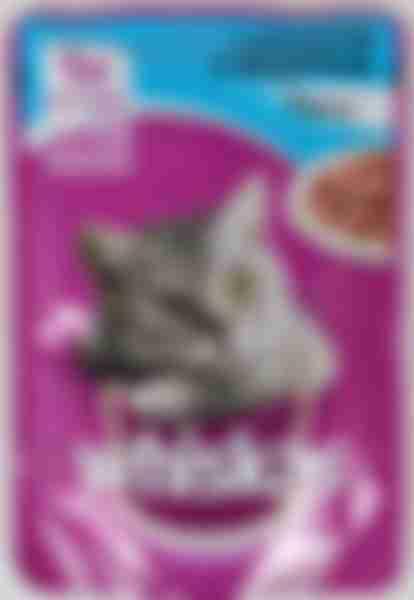 Whiskas влажный корм для кошек Лосось рагу 85г