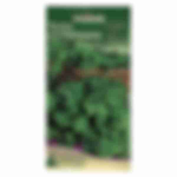 Семена Петрушка листовая Бутербродная 2г