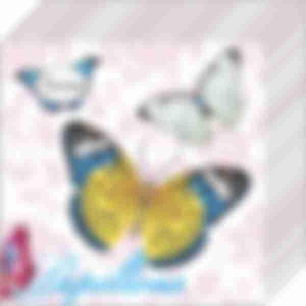 Бумажные салфетки Desna 1сл 25*25 Бабочки и цветы 40шт