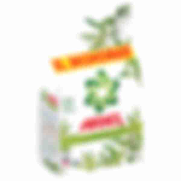 Стиральный порошок Ariel Автомат Вербена, 4,5кг