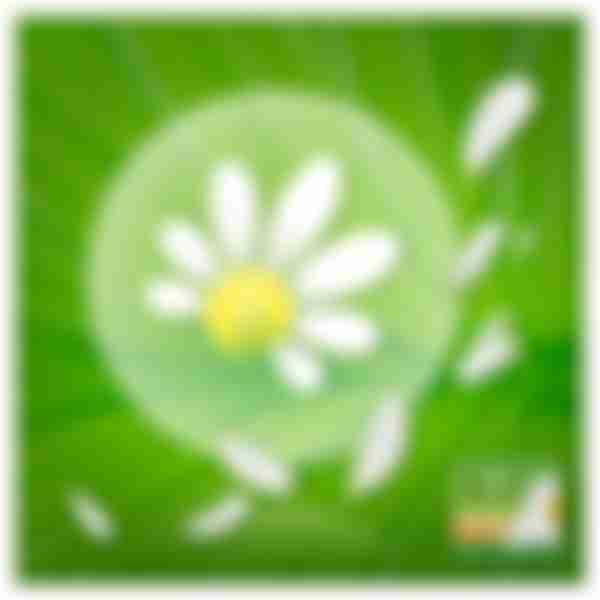 Г/п P&G NATURELLA Classic Женские ароматизир с крылышками Camomile Maxi Duo 14шт