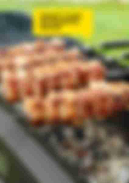 Набор шампуров FORESTER больших в блистере (6шт), с дерев. ручками RZ-60WB