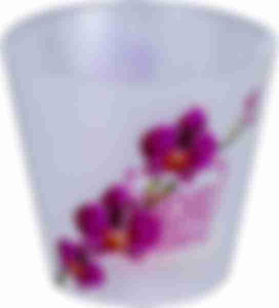 Горшок д/цветов ПР London Orchid роз.орхидея 1,6л 160мм ING6196РЗ