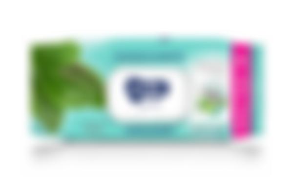 AURA Family Влажные салфетки освежающие big-pack с крышкой 120шт КК/12